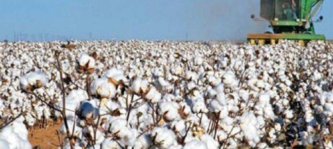 Η υπομονή των αγροτών του Έβρου εξαντλήθηκε… Κενό γράμμα οι υποσχέσεις του Υπουργού Αγροτικής Ανάπτυξης για τις αποζημιώσεις! – Κατάθεση Επίκαιρης Ερώτησης